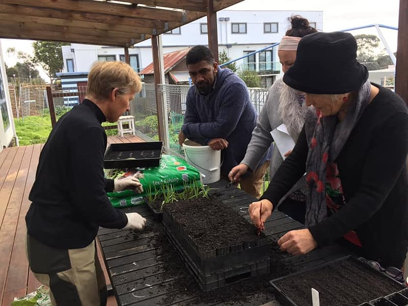 People learning about planting
